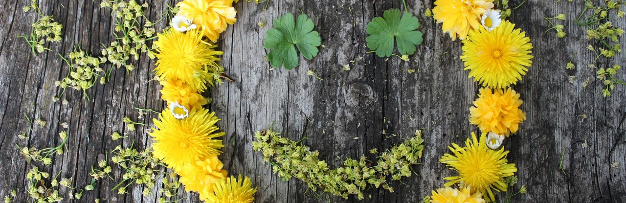A smiling face is shown on the picture of the start page. It is composed of many yellow and white flowers, the eyes and the mouth are made of leaves. The picture is laid out on the bark of a tree and looks a bit like a smiling sun.